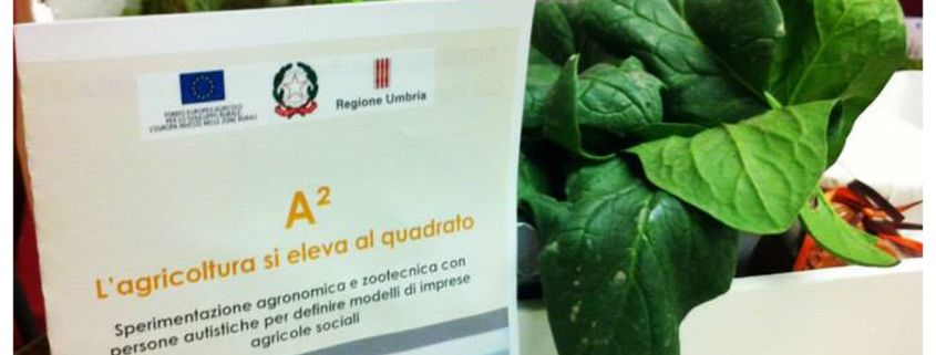 10 - Progetti comuni ANGSA Umbria Onlus