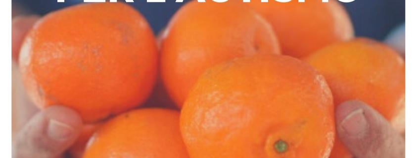 le clementine per l'autismo