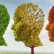 coordinamento salute mentale umbria